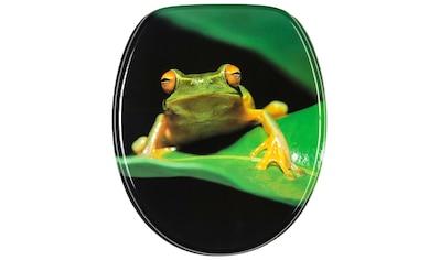 Sanilo WC-Sitz »Frosch Grün«, mit Absenkautomatik kaufen