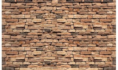 Consalnet Vliestapete »Bunte Backsteinmauer«, verschiedene Motivgrößen, für das Büro... kaufen
