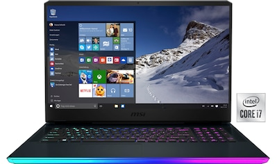 MSI Gaming-Notebook »GE76 Raider 10UG-289«, ( 1000 GB SSD) kaufen