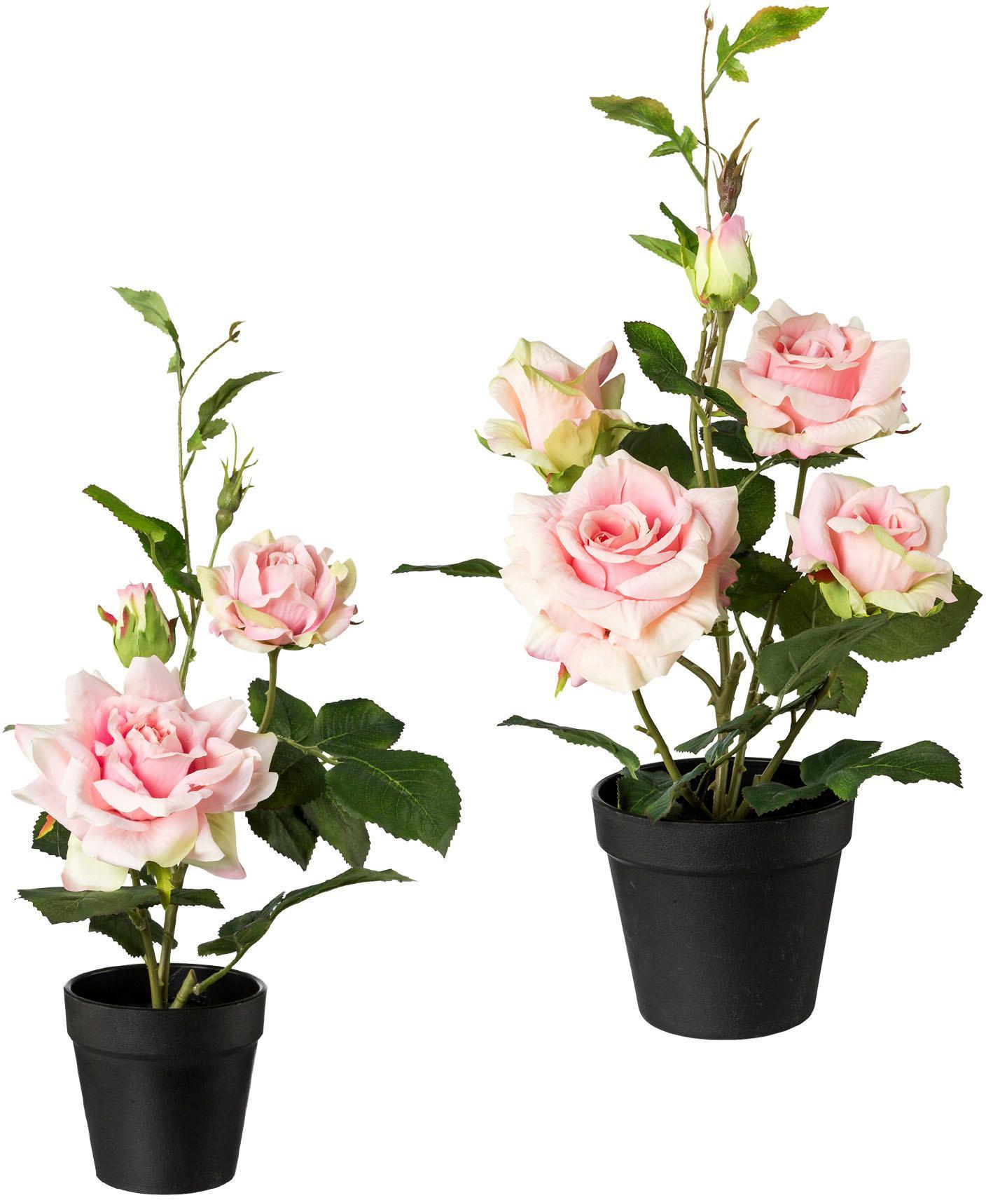 Creativ green Künstliche Zimmerpflanze, 2er Set rosa Zimmerpflanzen Kunstpflanzen Wohnaccessoires Zimmerpflanze