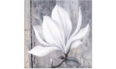 Artland Glasbild »Klassische Magnolie« kaufen