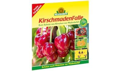 NEUDORFF Klebefalle »Kirschmaden«, 7 Stk. kaufen