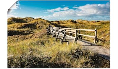 Artland Wandbild »Landschaft in den Dünen Insel Amrum«, Küste, (1 St.), in vielen... kaufen