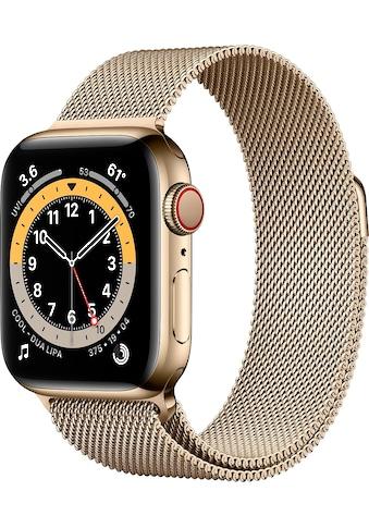 Apple Series 6 GPS + Cellular, Edelstahlgehäuse mit Milanaise Armband 40mm Watch kaufen