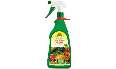 NEUDORFF Pflanzenschutzmittel »Fungisan Gemüse - Pilzfrei«, 1 l kaufen