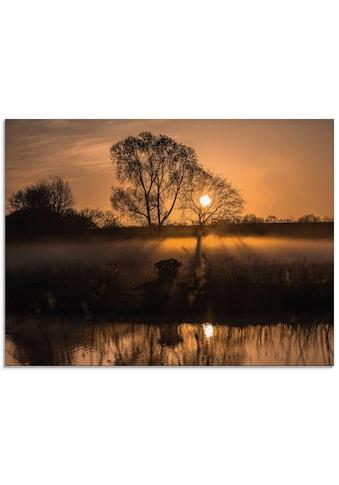 Artland Glasbild »Nebelstimmung am Elbe-Lübeck Kanal«, Sonnenaufgang & -untergang, (1... kaufen