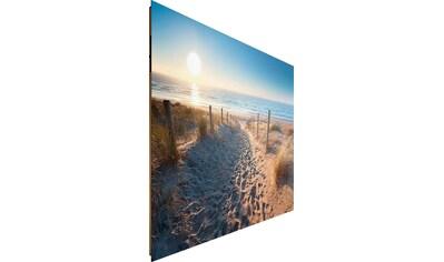Reinders! Deco-Panel »Dünenweg zum Meer« kaufen