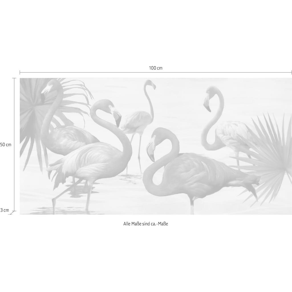 my home Deco-Panel »TEO RIZZARDI / Flamingos«, (100/3/50 cm)