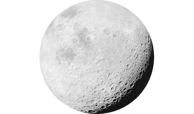 Komar Vliestapete »Luna«, abstrakt kaufen