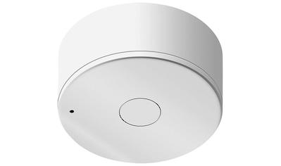 SCHELLENBERG Funk - Schalter »Lichtmodul 21003«, Smart Home kaufen