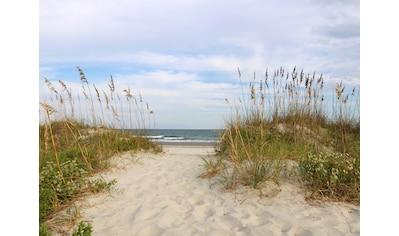 PAPERMOON Fototapete »Dunes Huntington Beach«, Vlies, in verschiedenen Größen kaufen