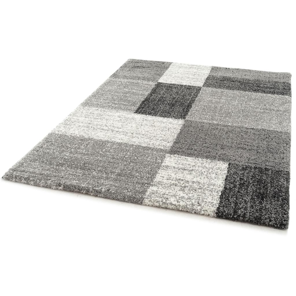 Festival Hochflor-Teppich »Delgardo K11511«, rechteckig, 30 mm Höhe, Besonders weich durch Microfaser, Wohnzimmer
