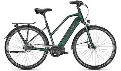 Raleigh E - Bike »SHEFFIELD 8«, 8 Gang Shimano Nexus Schaltwerk, Nabenschaltung, Mittelmotor 250 W kaufen