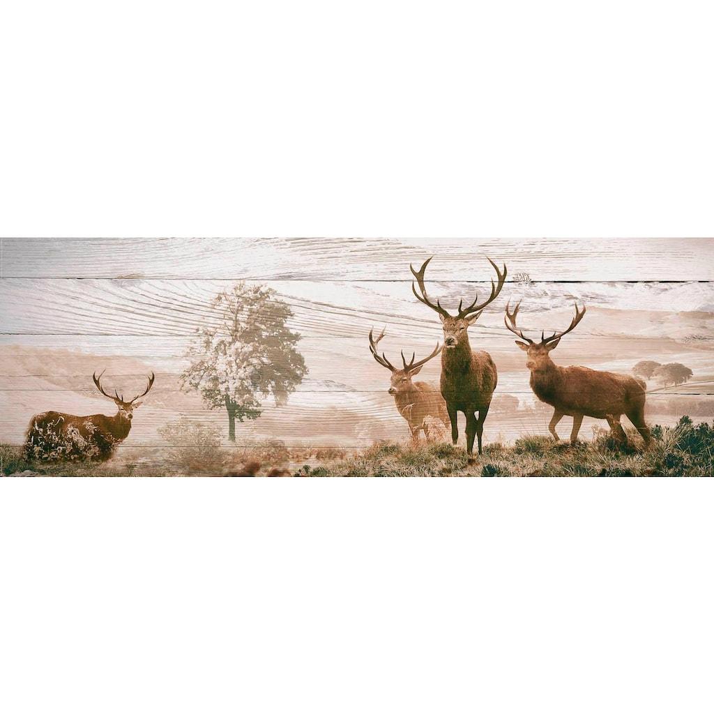 Reinders! Deco-Panel »Hirsche«, 156/52 cm