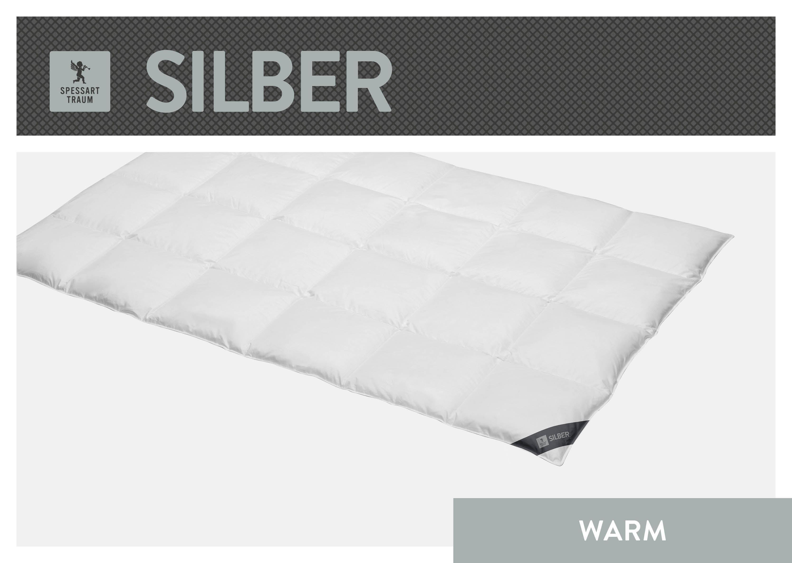 Daunenbettdecke Silber SPESSARTTRAUM warm Füllung: 100% Daunen Bezug: 100% Baumwolle