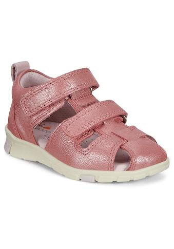 Ecco Lauflernschuh »Mini Stride Sandal«, mit Klettverschlüsse kaufen