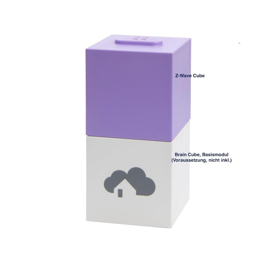 HOMEE Ergänzungsmodul zur Steuerung Z-Wave basierter Smart Home-Gerä »Z-Wawe Cube«