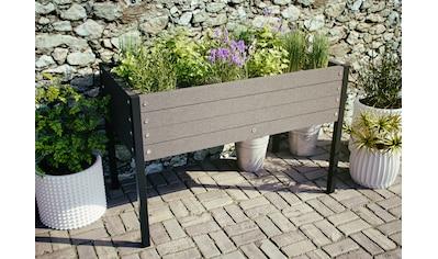 Kiehn - Holz Hochbeet BxTxH: 91x49x60 cm kaufen
