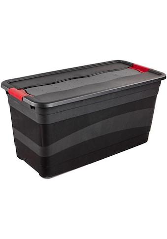 keeeper Transportbehälter »eckhart« kaufen