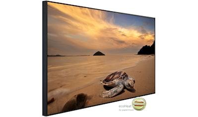 Papermoon Infrarotheizung »Schildkröte am Strand«, sehr angenehme Strahlungswärme kaufen