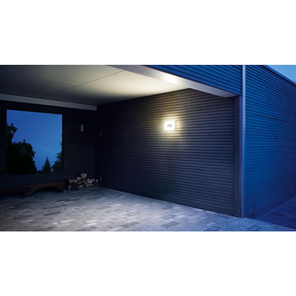 steinel Außen-Wandleuchte »LN 1 LED«, LED-Board, 1 St., Warmweiß, Steuerung über Lichtsensor, Dämmerungseinstellung von 5 - 200 lx, Schlagfestigkeit nach IK07, regenwassergeschützt, mit integriertem Dämmerungssensor