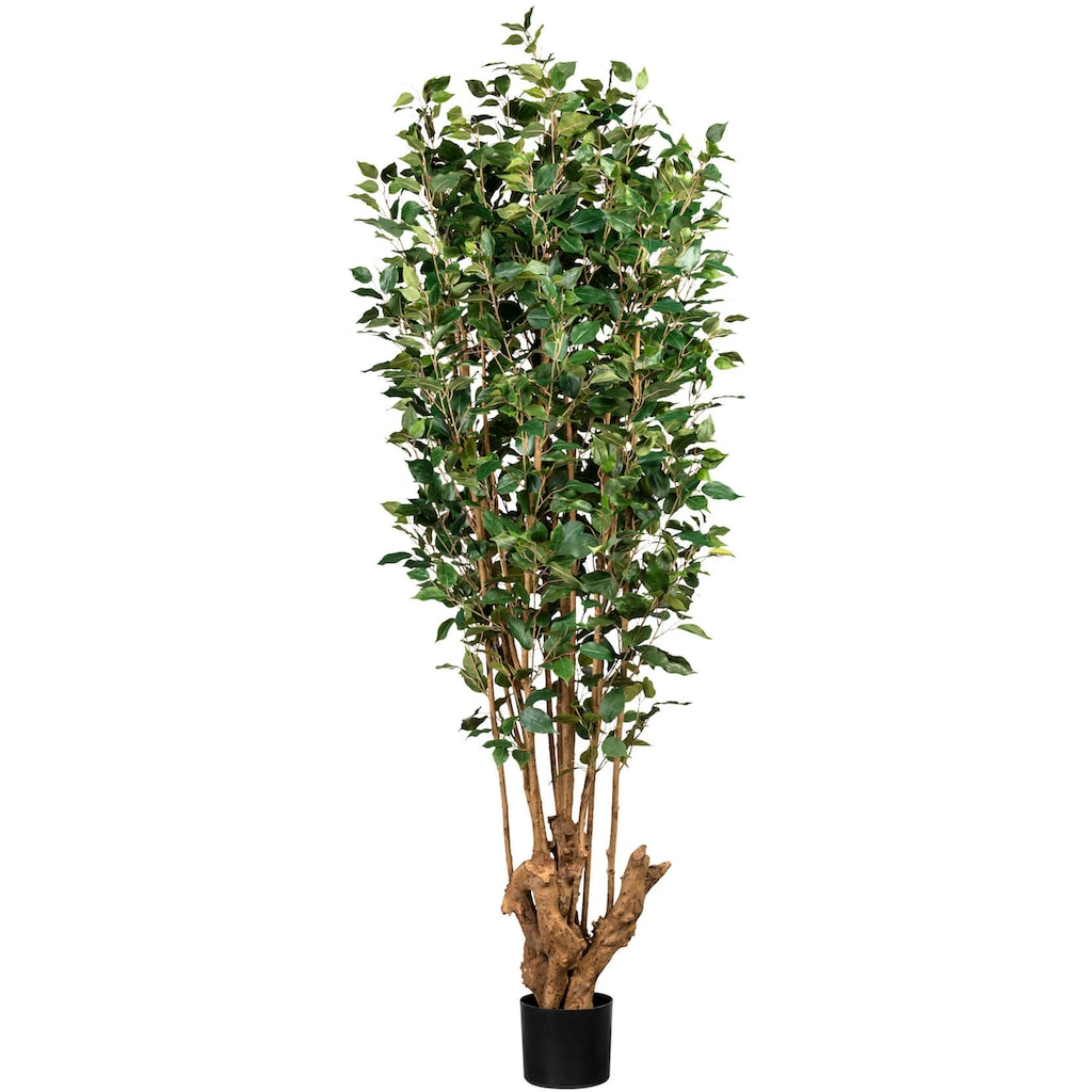 Creativ green Kunstbaum »Ficus Benjamini«