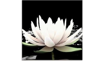 Artland Glasbild »Zwei Lotusblumen auf dem Wasser«, Blumen, (1 St.) kaufen