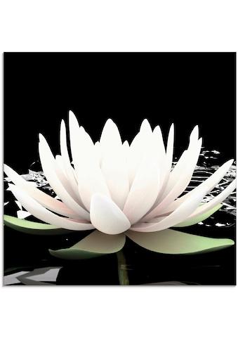Artland Glasbild »Zwei Lotusblumen auf dem Wasser« kaufen