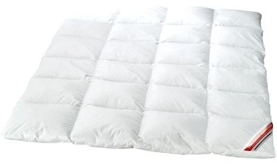 KBT Bettwaren Microfaserbettdecke »Princess«, warm, Bezug 100% Baumwolle, (1 St.) kaufen