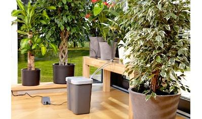 GARDENA Bewässerungssteuerung »city gardening, 1266-20« kaufen