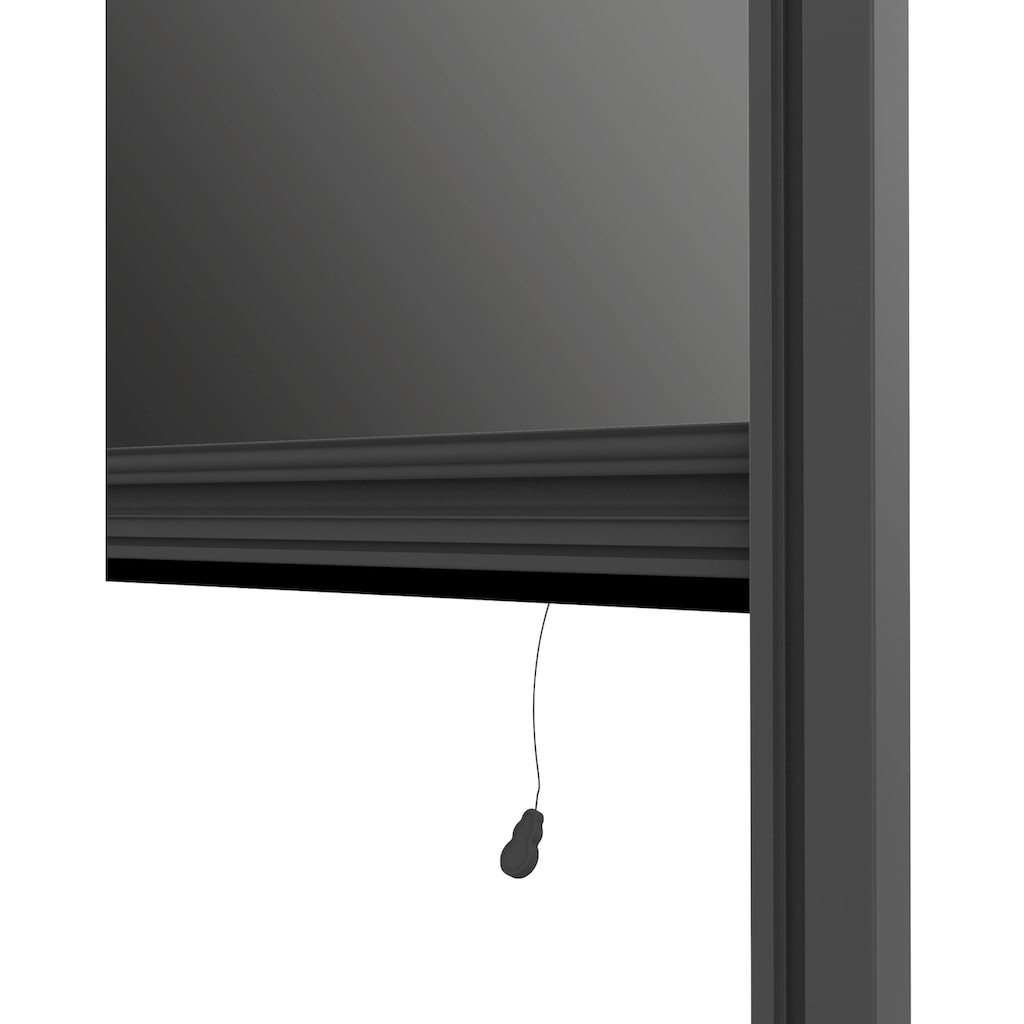 Windhager Insektenschutz-Rollo, BxH: 100x160 cm