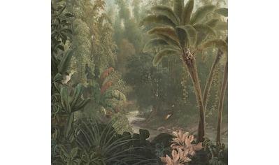 Art for the home Fototapete »Dschungel« kaufen