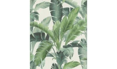 Rasch Vliestapete »BARBARA Home Collection II«, gemustert-botanisch kaufen
