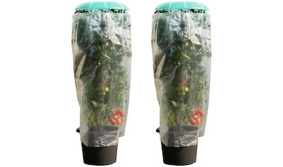 KHW Pflanzenschutzdach »Tomatenhut«, inkl. Stab und Schutzfolie, BxH: 49x120 cm kaufen