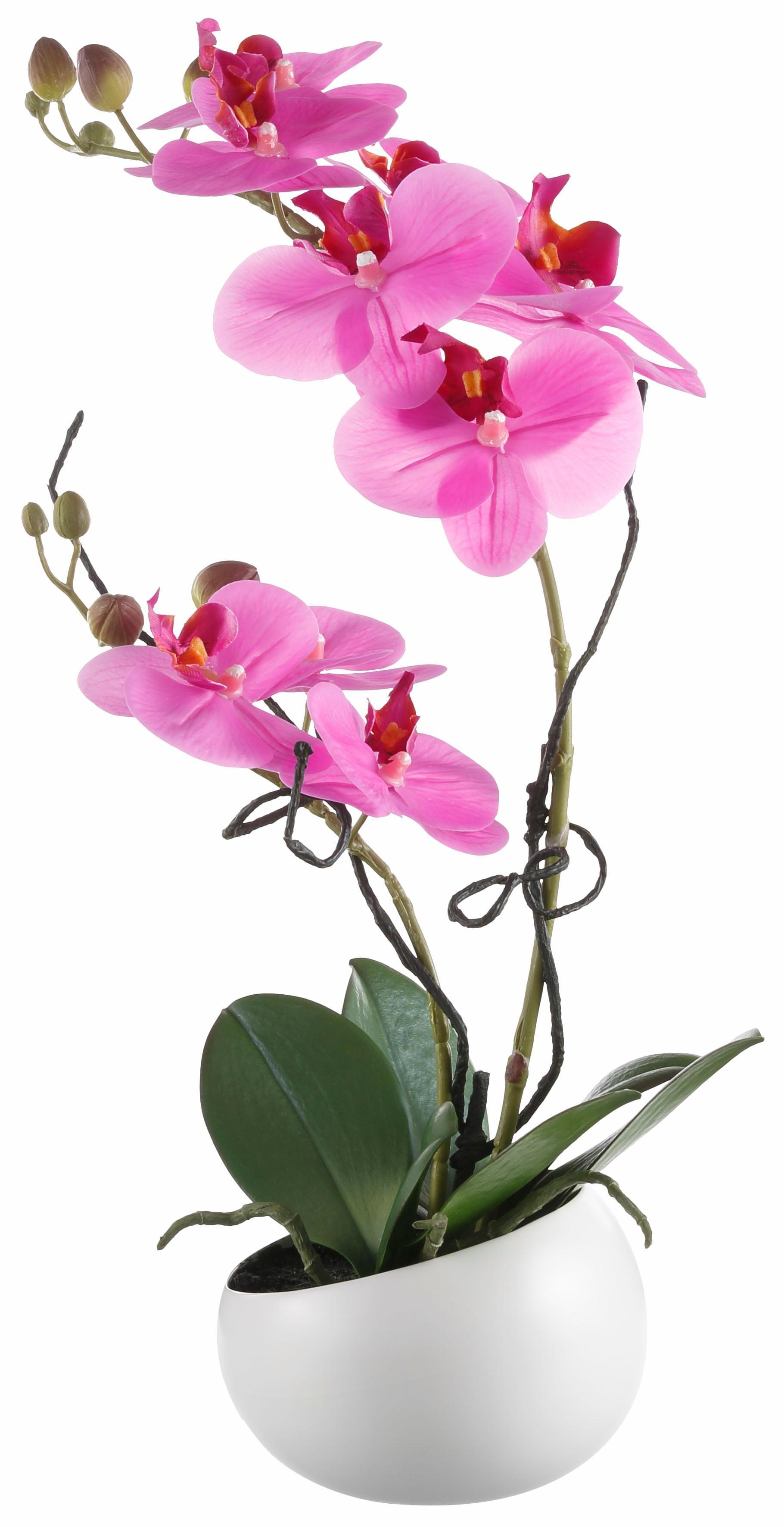 Kunstorchidee Orchidee Technik & Freizeit/Heimwerken & Garten/Garten & Balkon/Pflanzen/Kunstpflanzen/Kunst-Orchideen