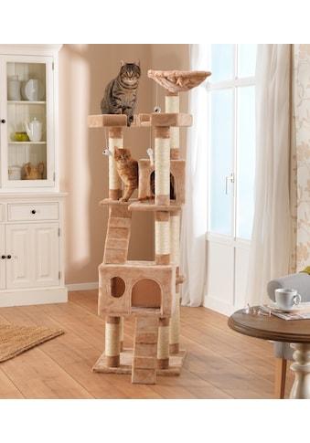 SILVIO design Kratzbaum »Deluxe«, hoch, BxTxH: 50x50x170 cm kaufen