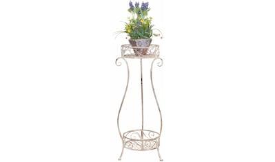 Home affaire Blumenständer kaufen