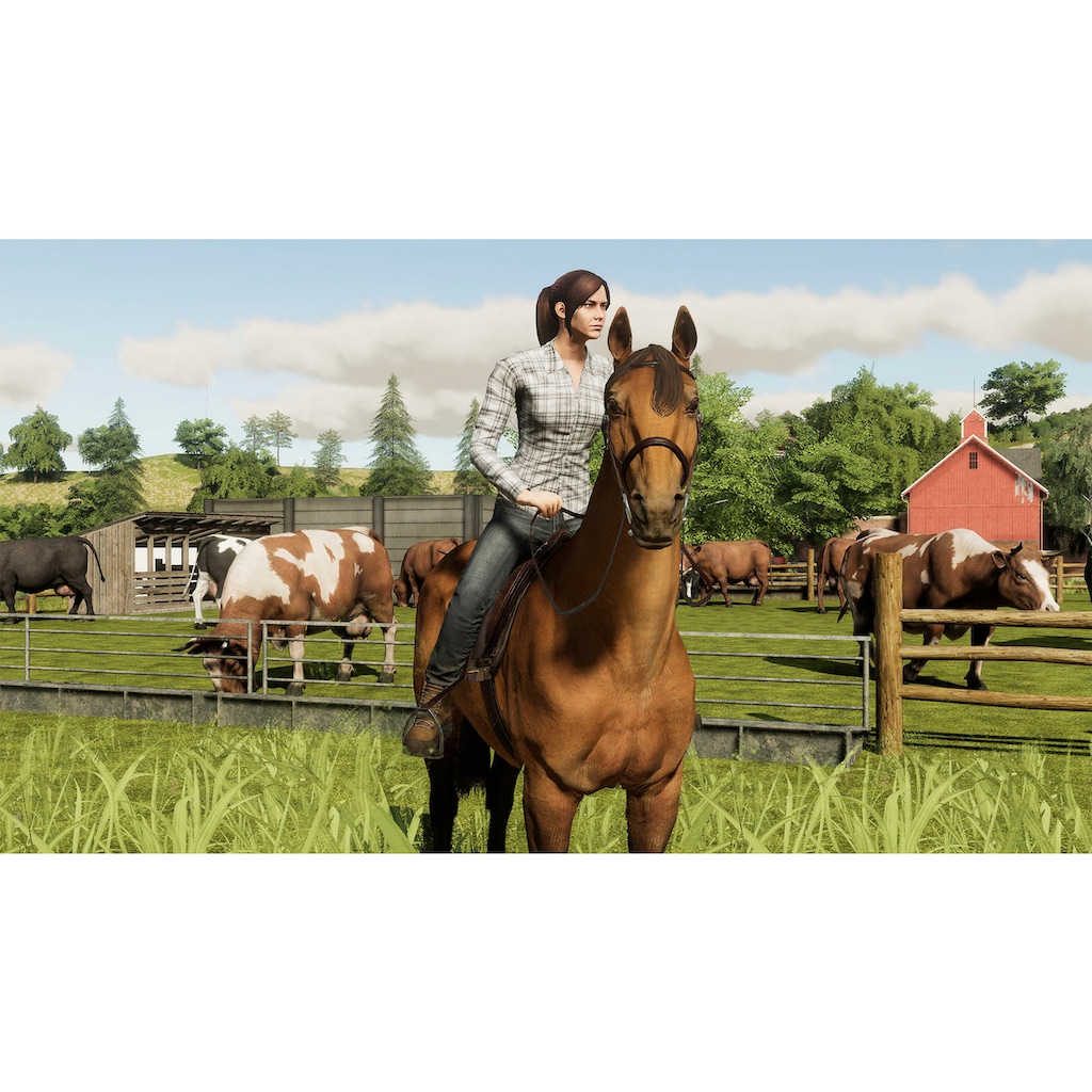 Astragon Spiel »Landwirtschafts-Simulator 19: Premium Edition«, PlayStation 4