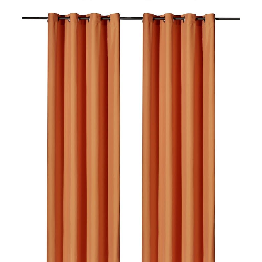 Weckbrodt Vorhang »Vito«, HxB: 245x140