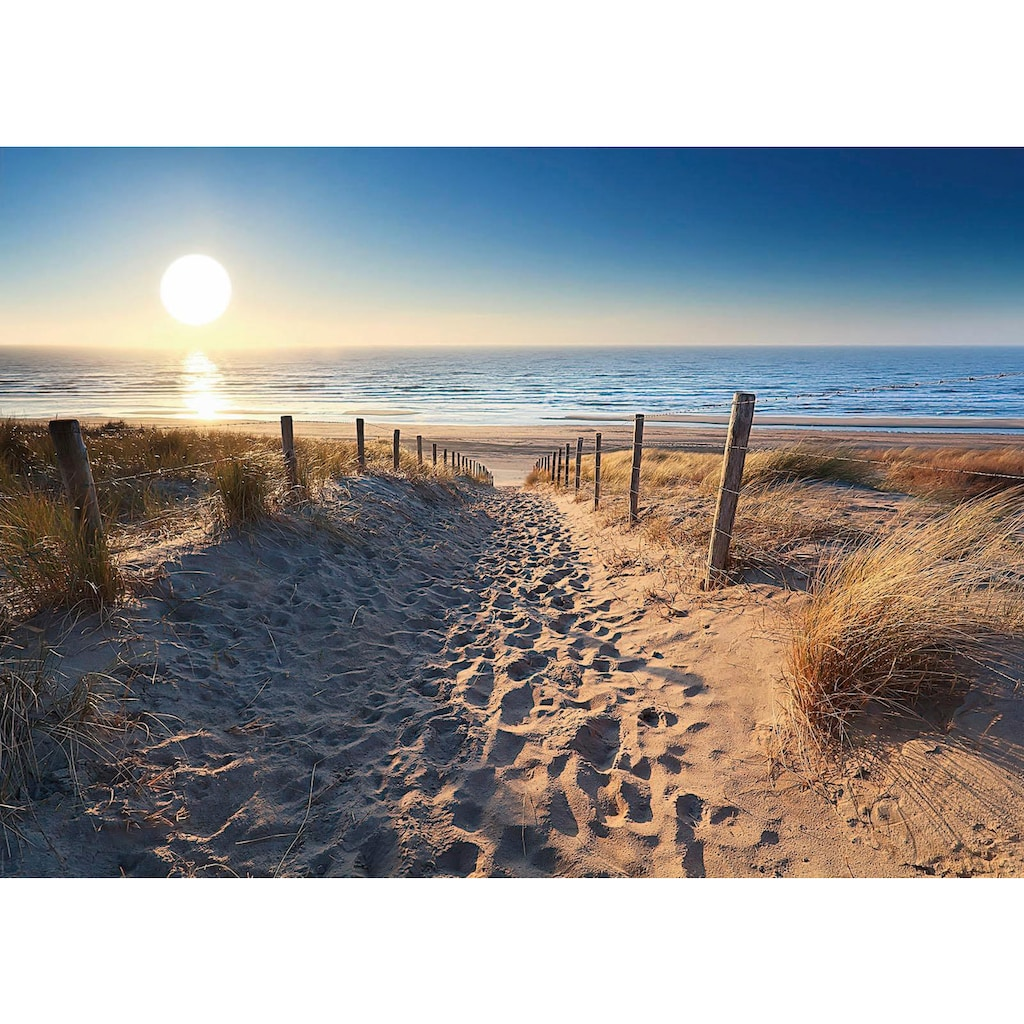 Reinders! Deco-Panel »Dünenweg zum Meer«