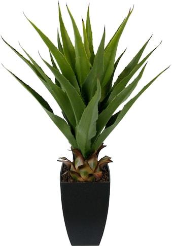 I.GE.A. Kunstpflanze »Agave im Topf« (1 Stück) kaufen