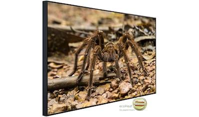 Papermoon Infrarotheizung »Spinne«, sehr angenehme Strahlungswärme kaufen