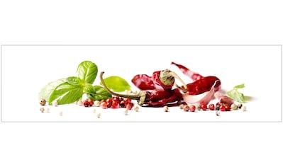 Küchenrückwand  -  Spritzschutz »profix«, Herbs & Spice, 220x60 cm kaufen