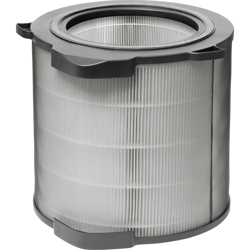 AEG Ersatzfilter »Care-Filter AFDCAR4«