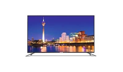 "TechniSat 139 cm (55"" Zoll) UHD 4K Fernseher/Monitor (HDR10, Eco, 3x HDMI) »Monitorline UHD 55« kaufen"