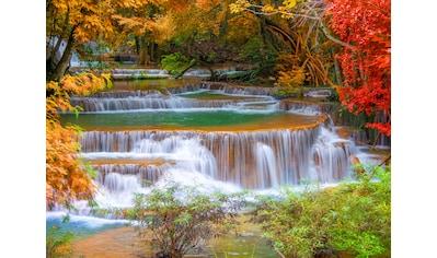 PAPERMOON Fototapete »Waterfall in Rain Forest«, Vlies, in verschiedenen Größen kaufen