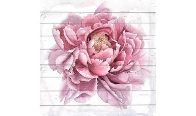 queence Holzbild »Gezeichnete Blüte«, 40x40 cm kaufen