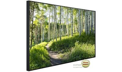Papermoon Infrarotheizung »EcoHeat - Birkenwald«, Aluminium, 1200 W, 100 x 115 cm, mit... kaufen