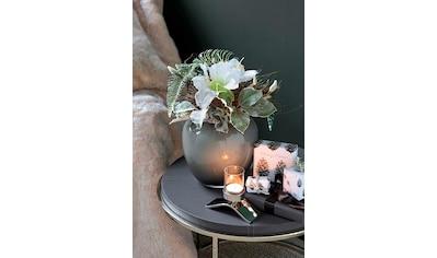 Fink Kunstpflanze »AMARYLLIS« kaufen
