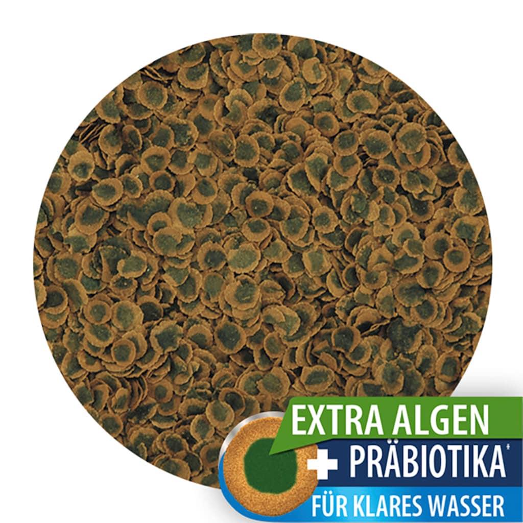 Tetra Fischfutter »Pro Algae«, (2), Flockenfutter 2x250 ml